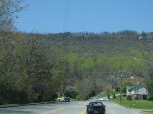 Spring leaf color creaps up a mountian