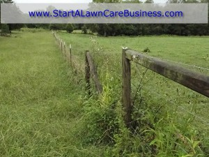 Make money with fence clearing. Lawn Care Business.