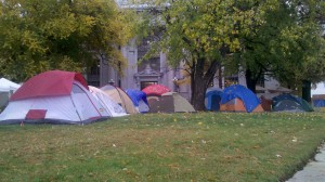 Occupy Lawn Care